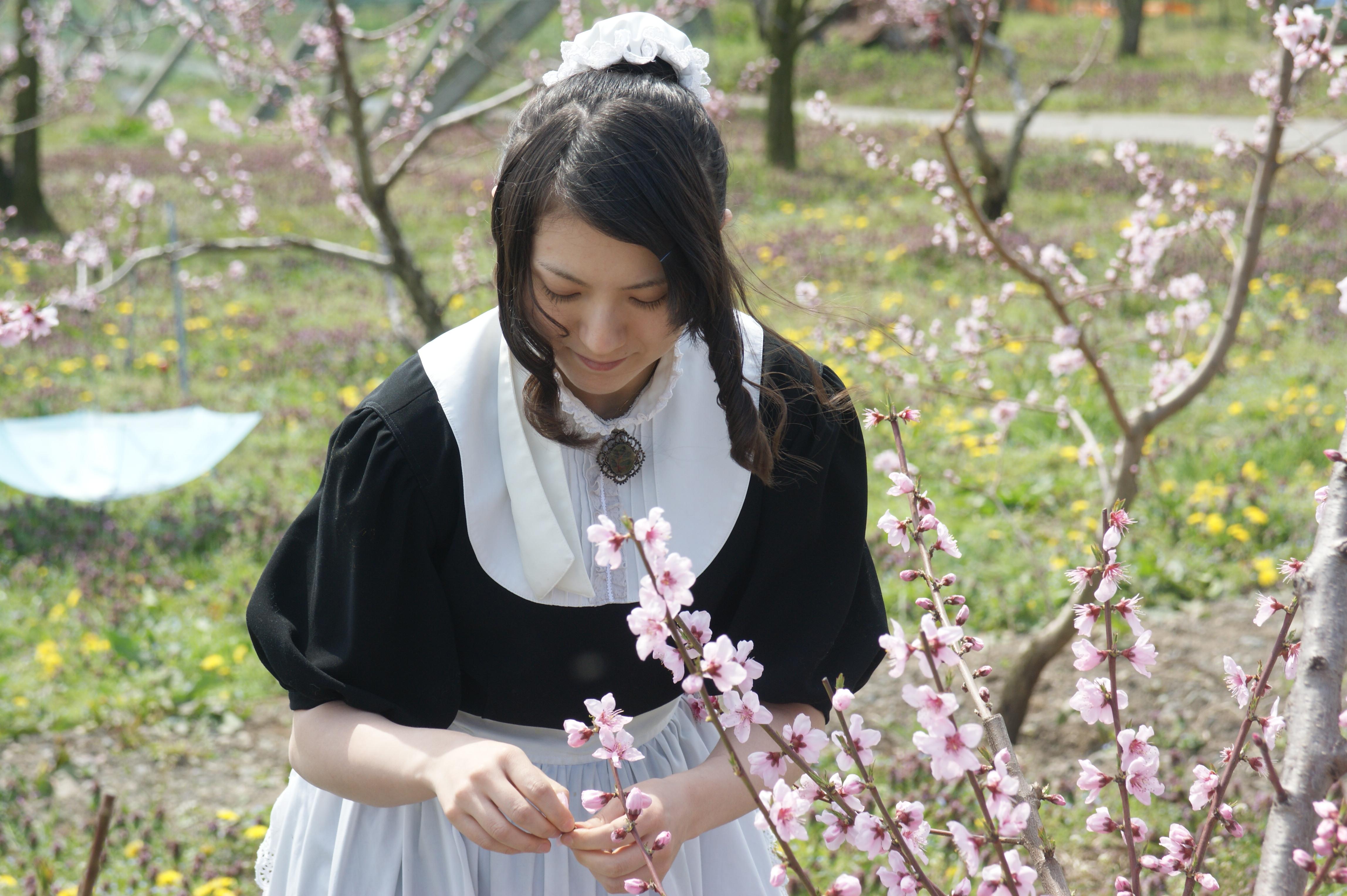hanazumi2.JPG